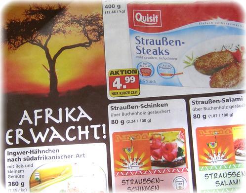 Afrika erwacht! Im Kühlregal von PLUS!