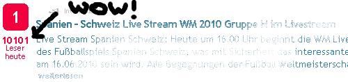 WM 2010 Live-Stream